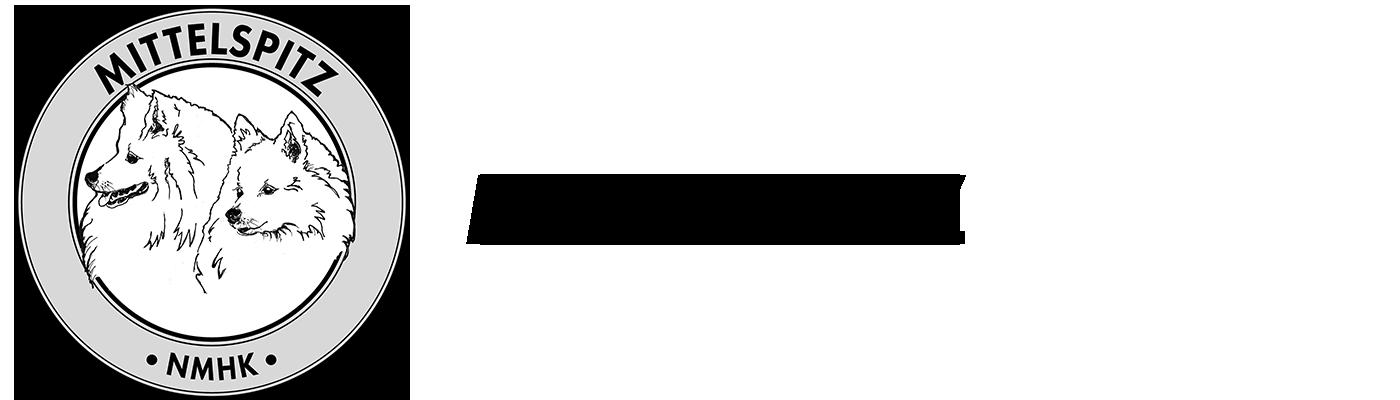 Mittelspitz Logo